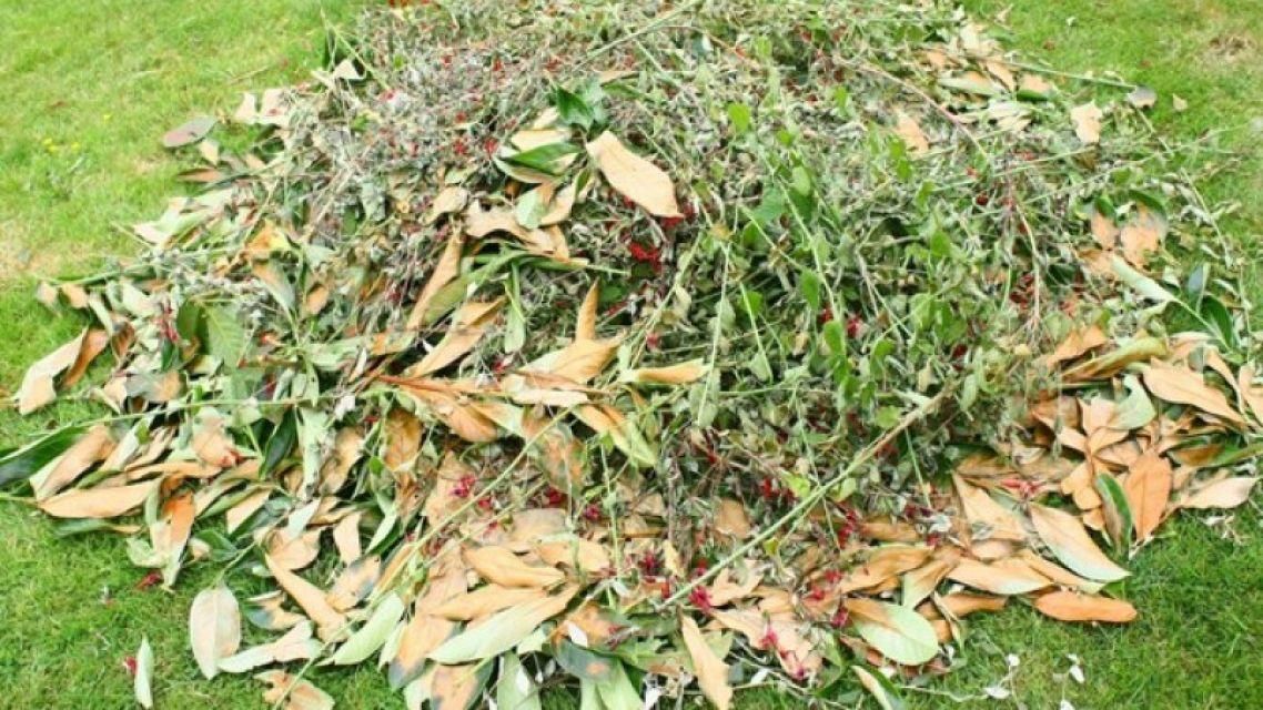 Uloženie zeleného odpadu